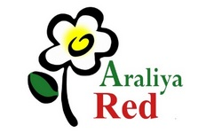 araliya red